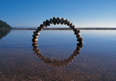자연과 순환에 관한 메시지 <Reflections>