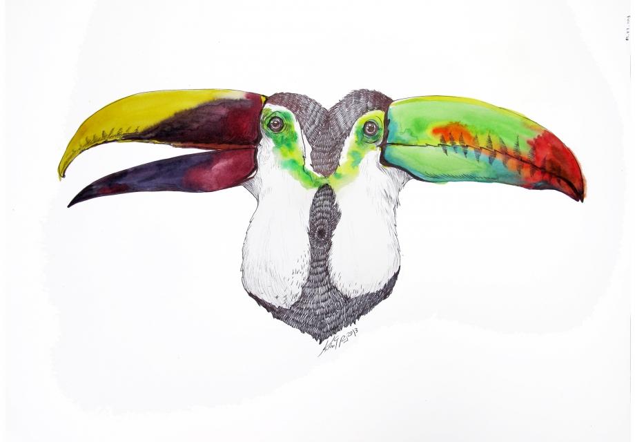 [365 ART ROAD] 좋아하는 새, 큰 부리 새 투칸을 만나다.