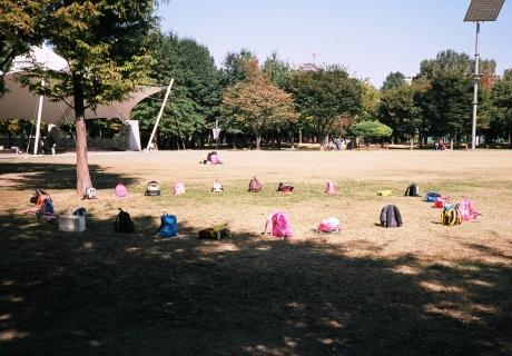 우리가 사랑해야만 했던 도시 - 반대라서 끌리는 이유, 서울 숲